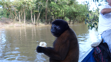 Cruisin' down the Amazon with my new friends!